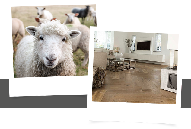 Hollandsche vloeren houten vloer / Louis Tapis Bussum